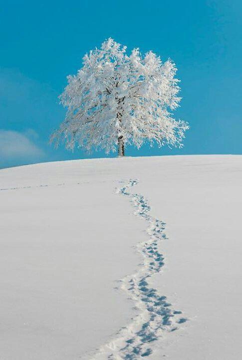 Zima je zimička :) - Obrázok č. 54