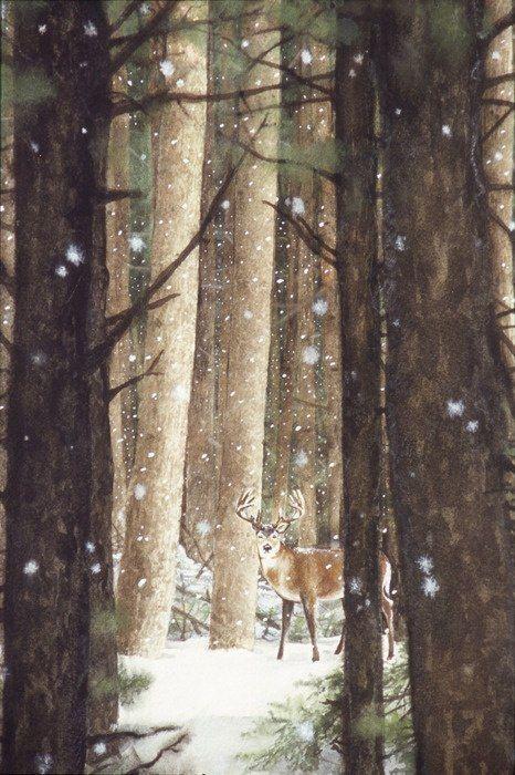 Zima je zimička :) - Obrázok č. 62