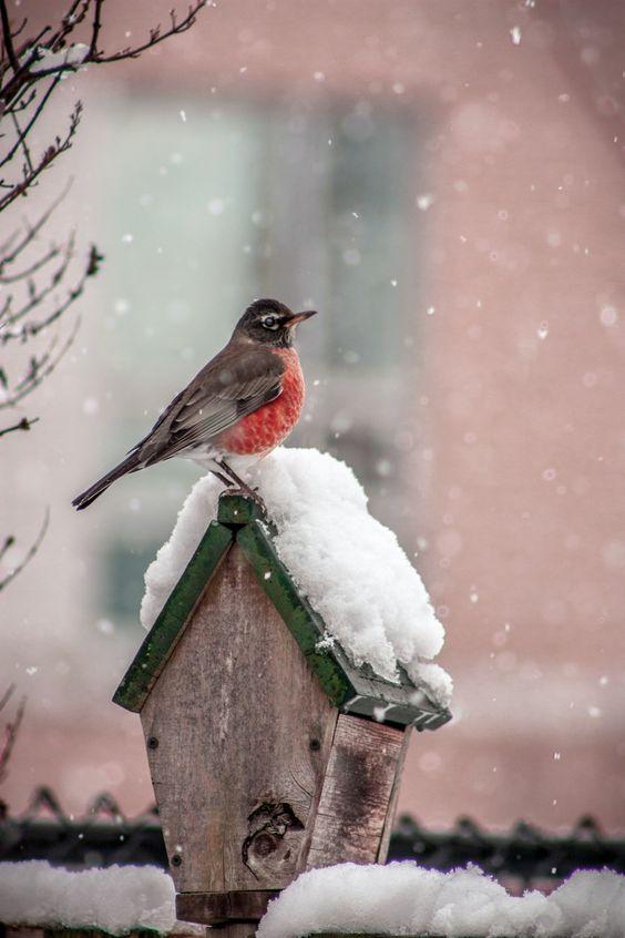 Zima je zimička :) - Obrázok č. 9