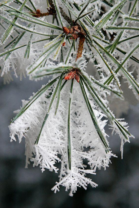Zima je zimička :) - Obrázok č. 79