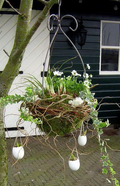 Hyacinty - moje obľúbené kvietky - Obrázok č. 115