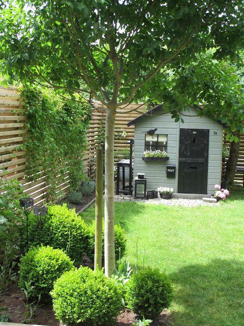 Záhradka v radovom domčeku - Obrázok č. 60