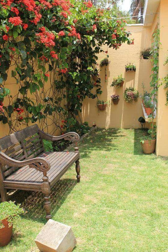 Záhradka v radovom domčeku - Obrázok č. 92