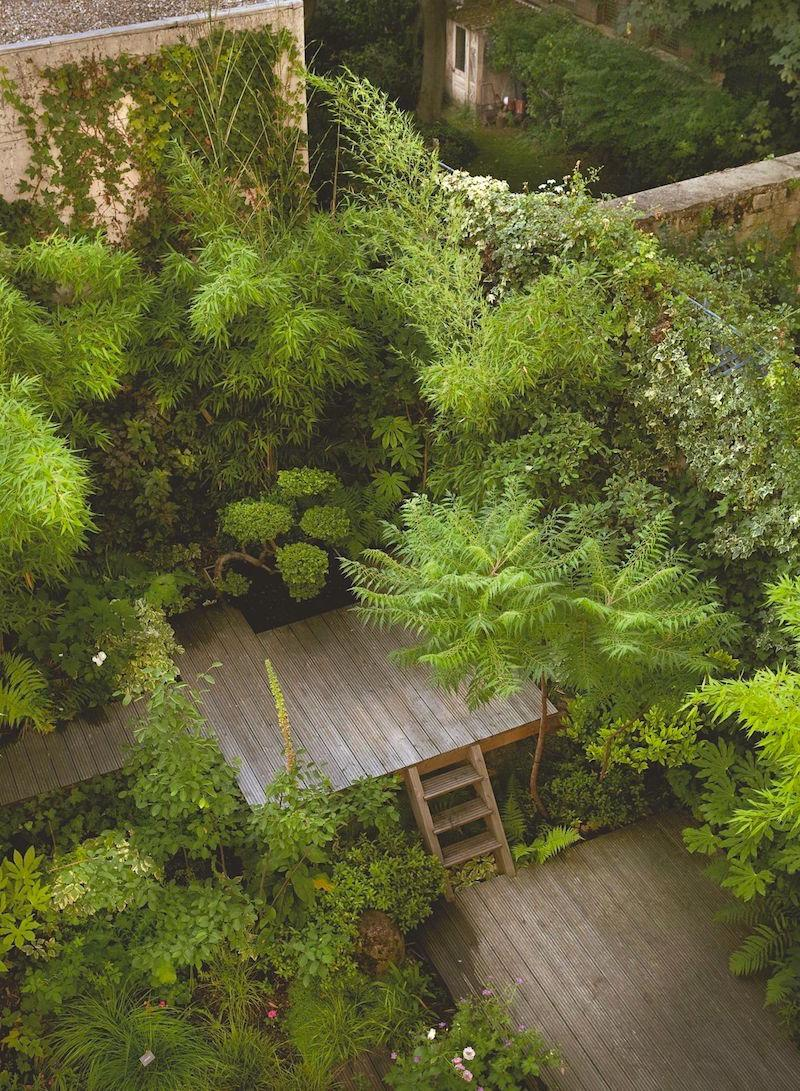 Záhradka v radovom domčeku - Obrázok č. 5