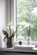 parapet do rohu pojde jedna orchidea v krhlicke