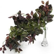 tahavy kvet na linku tahac dekor florasystem 5,5eur
