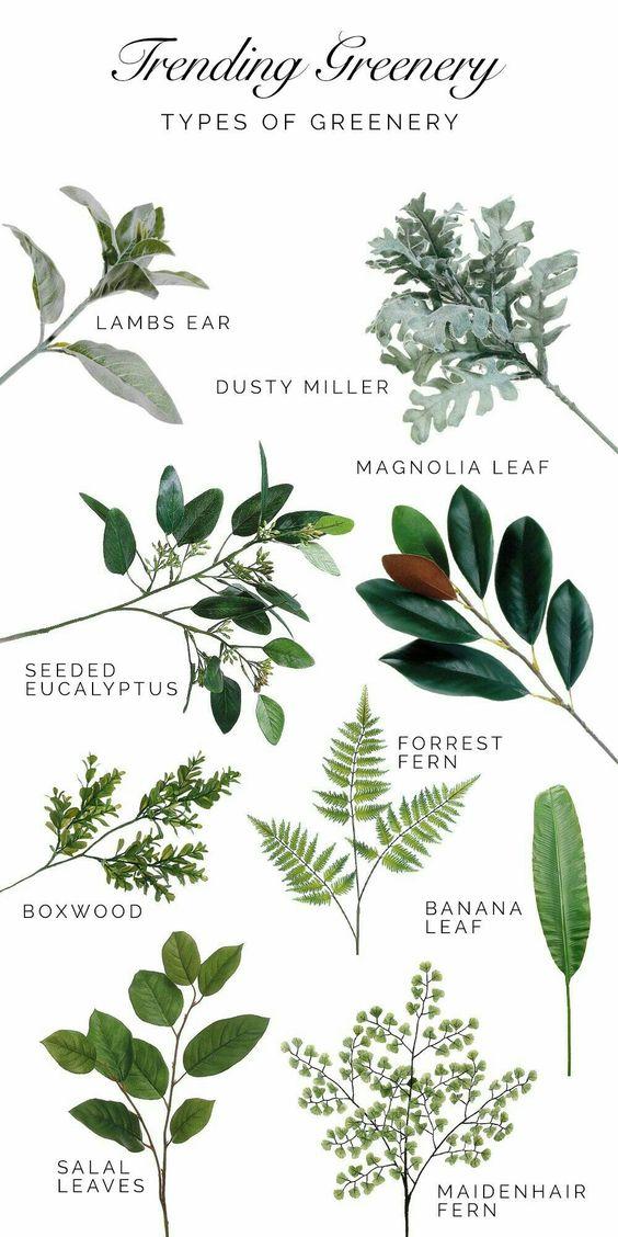 Bylinková záhrada - Obrázok č. 23