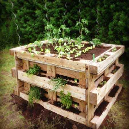 Bylinková záhrada - Obrázok č. 8