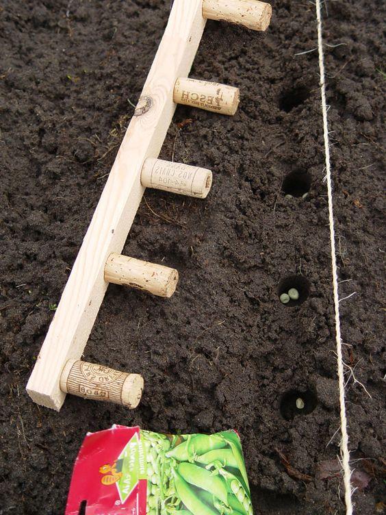 Bylinková záhrada - Obrázok č. 32