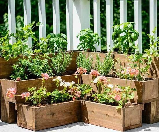 Bylinková záhrada - Obrázok č. 58