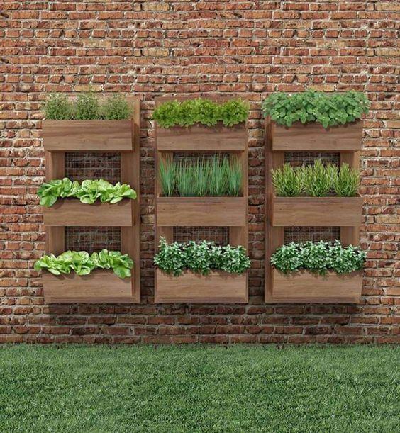 Bylinková záhrada - Obrázok č. 70