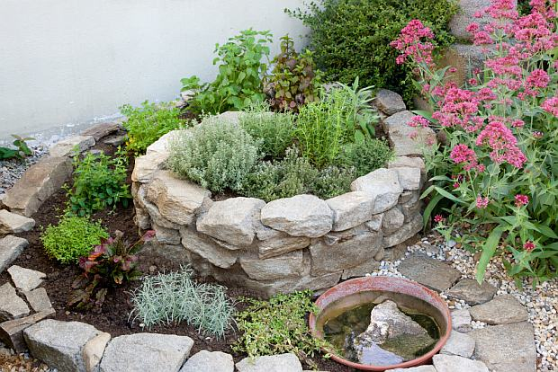 Bylinková záhrada - Obrázok č. 98