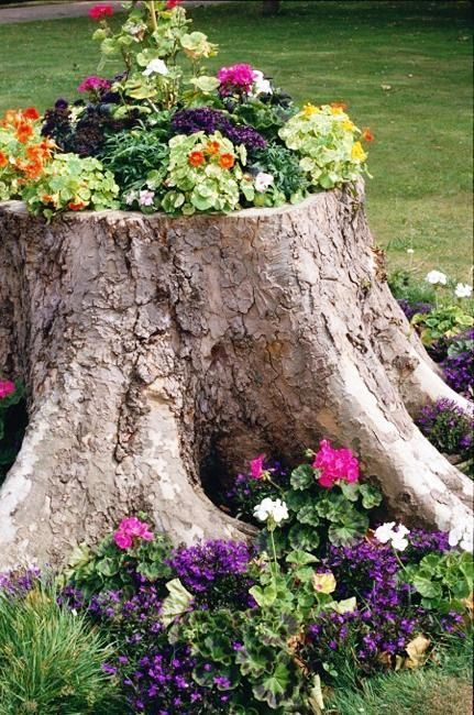 Záhradné nápady - inšpirácie z internetu - Obrázok č. 59