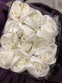 Ivory růže,
