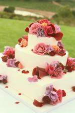 tenhle dort mě hodně zaujal