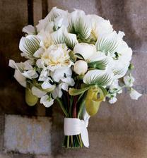 Orchideje jsou  favoritkou:)