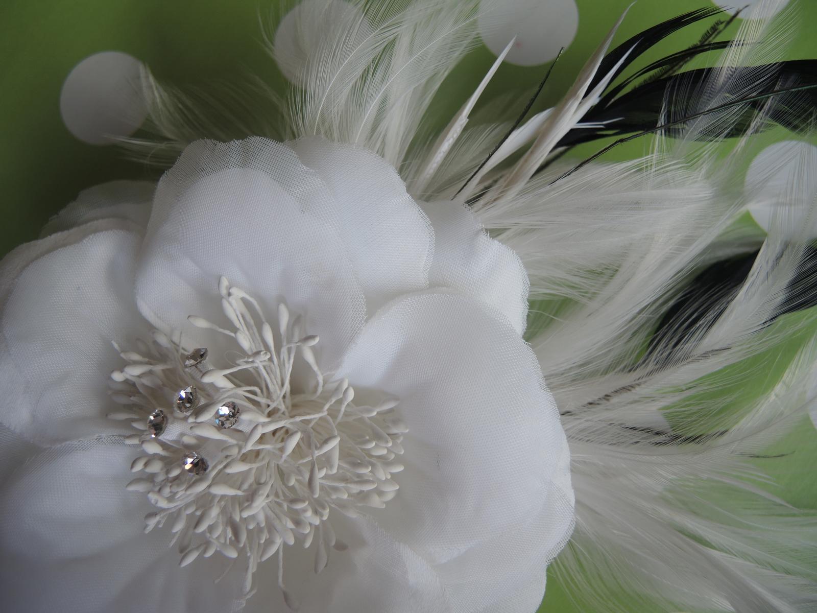 kvet do vlasov čierny - Obrázok č. 2