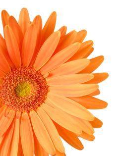 Moje oranzove predstavy - Obrázok č. 37