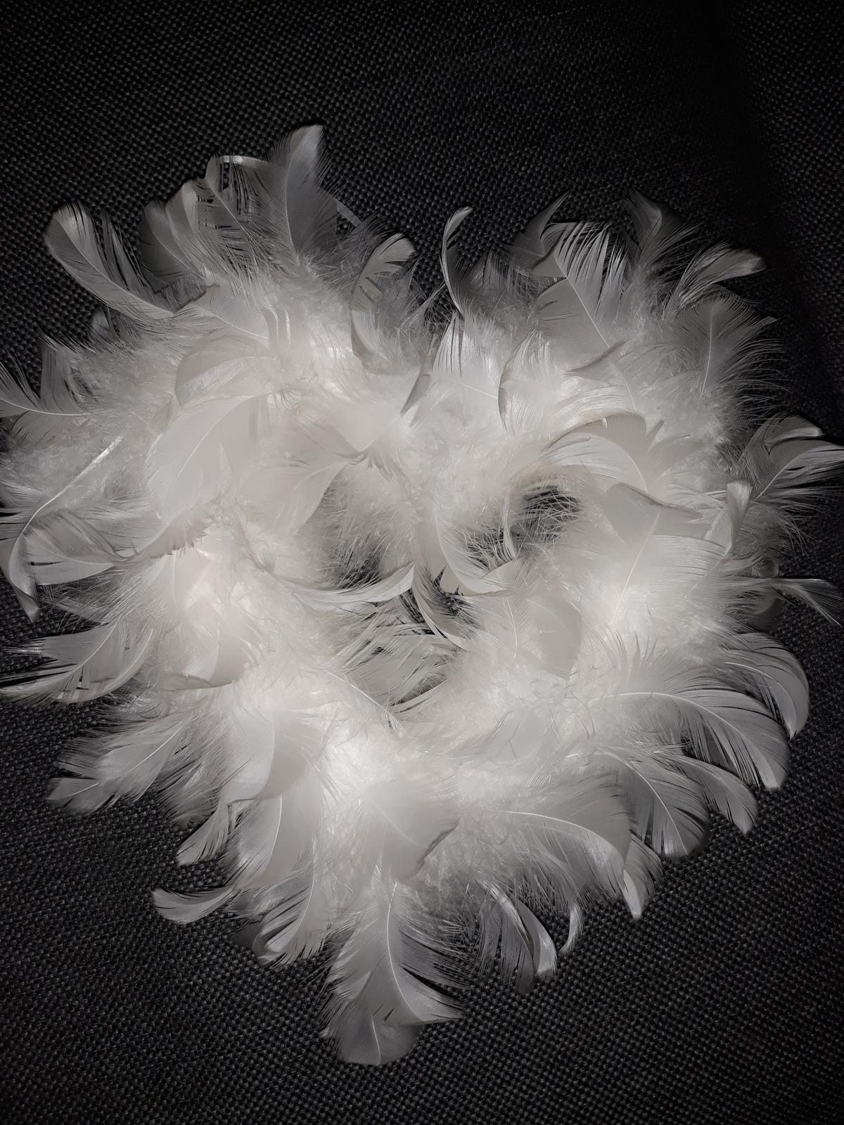 srdce z peria - Obrázok č. 1