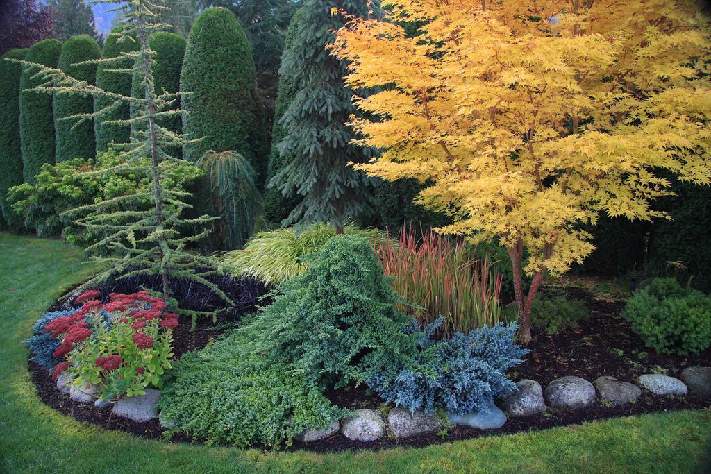 Záhradné inšpirácie - Obrázok č. 118