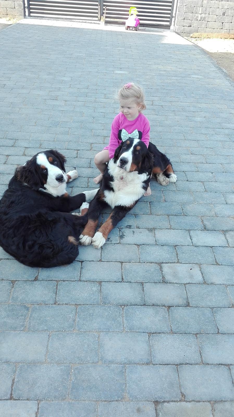 Nas zverinec - dve fenky,jeden pes a dvaja kocurikovia - partaci <3