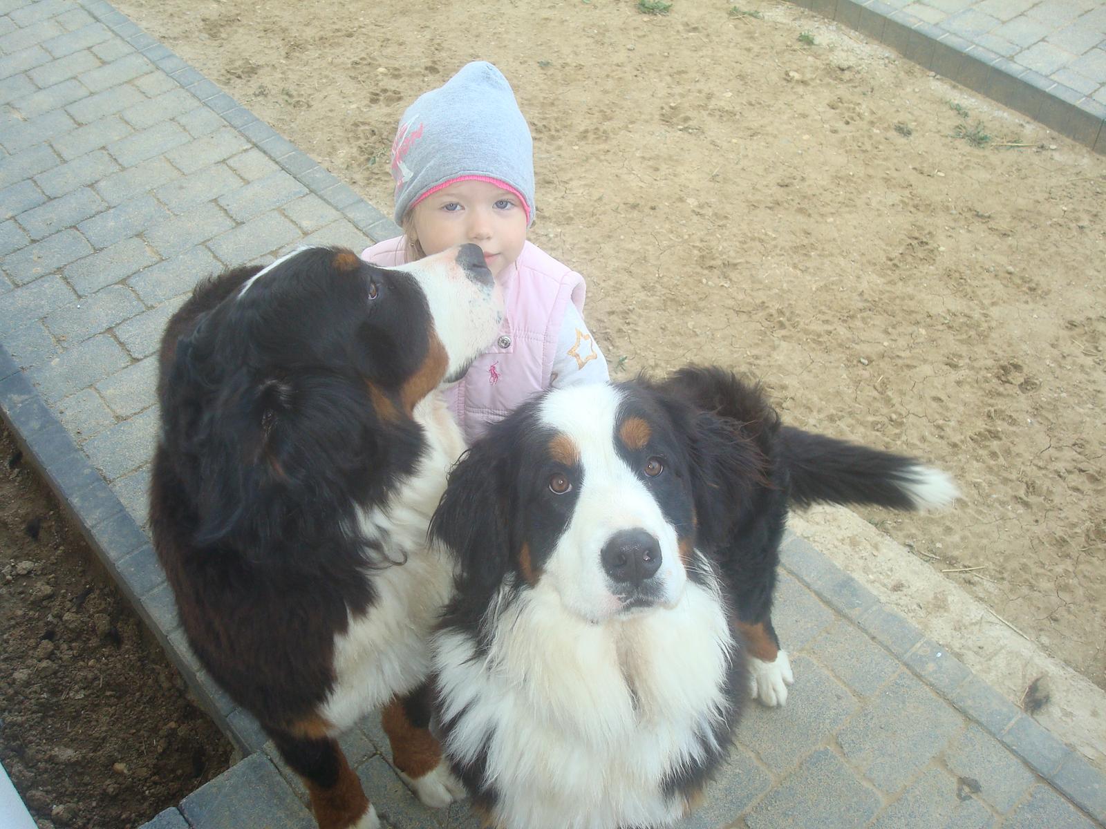 Nas zverinec - dve fenky,jeden pes a dvaja kocurikovia - Obrázok č. 44
