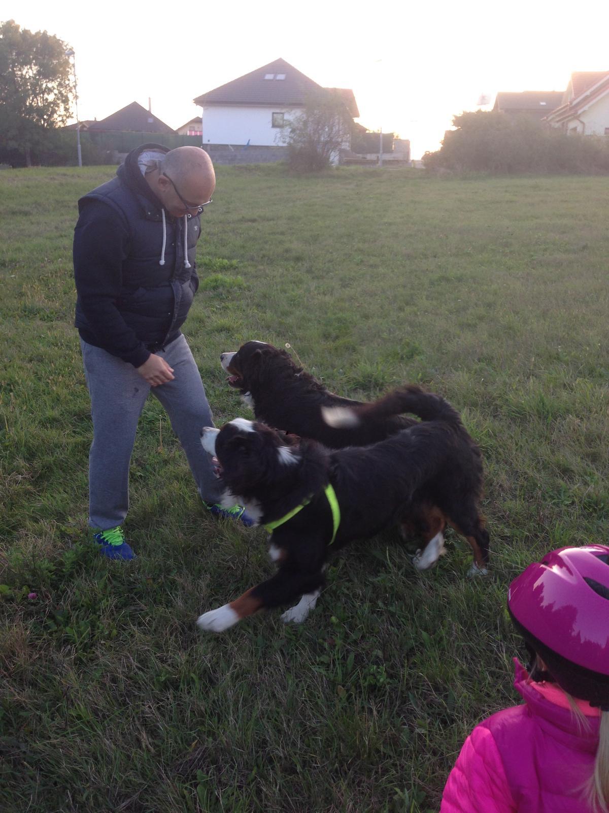 Nas zverinec - dve fenky,jeden pes a dvaja kocurikovia - Obrázok č. 64