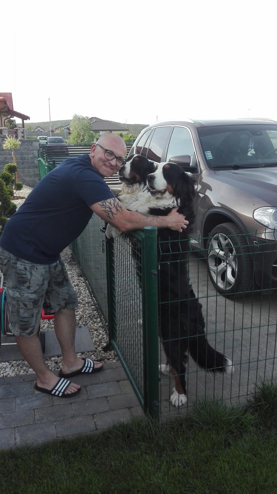 Nas zverinec - dve fenky,jeden pes a dvaja kocurikovia - Obrázok č. 76