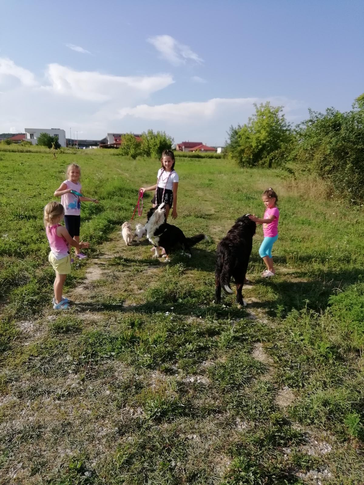 Nas zverinec - dve fenky,jeden pes a dvaja kocurikovia - Obrázok č. 92