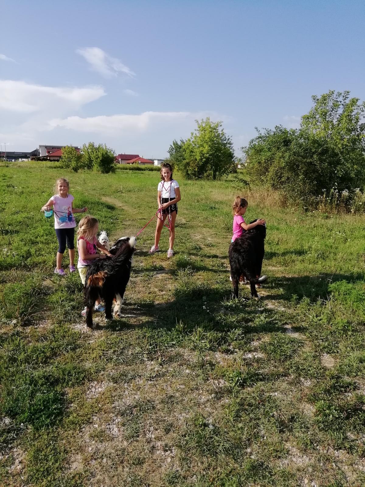 Nas zverinec - dve fenky,jeden pes a dvaja kocurikovia - Obrázok č. 93