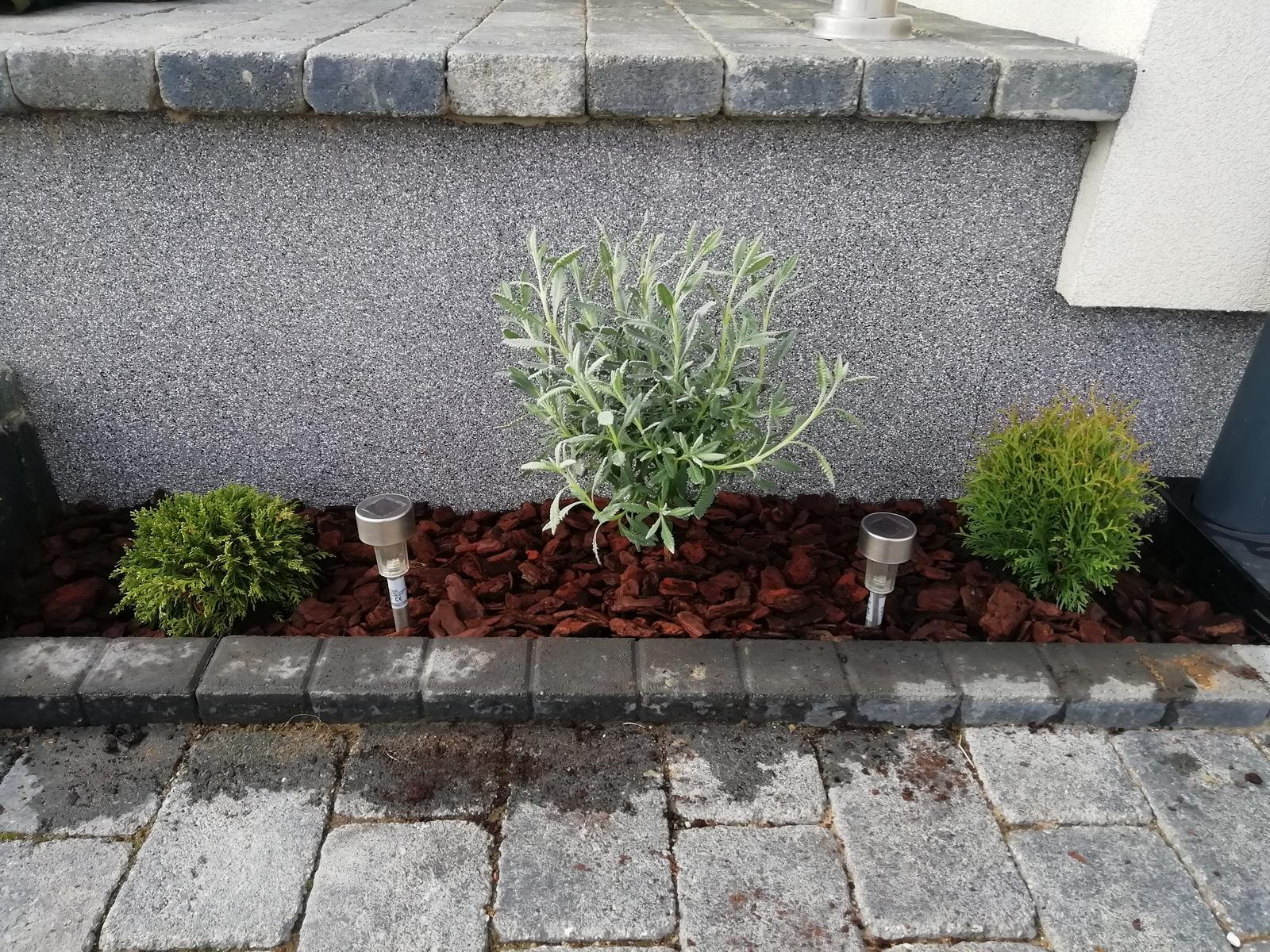 Záhradka 2019/20 bývame 4 a 5 rok :-) - dnesne sadenie 15.3.