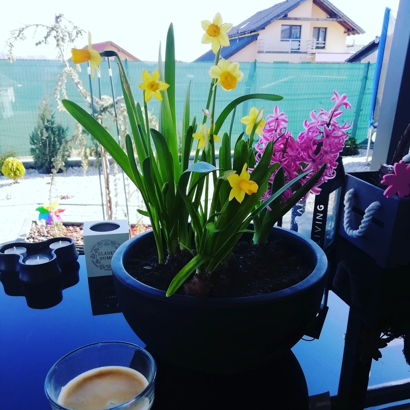 Záhradka 2019/20 bývame 4 a 5 rok :-) - Krásny slnečný deň