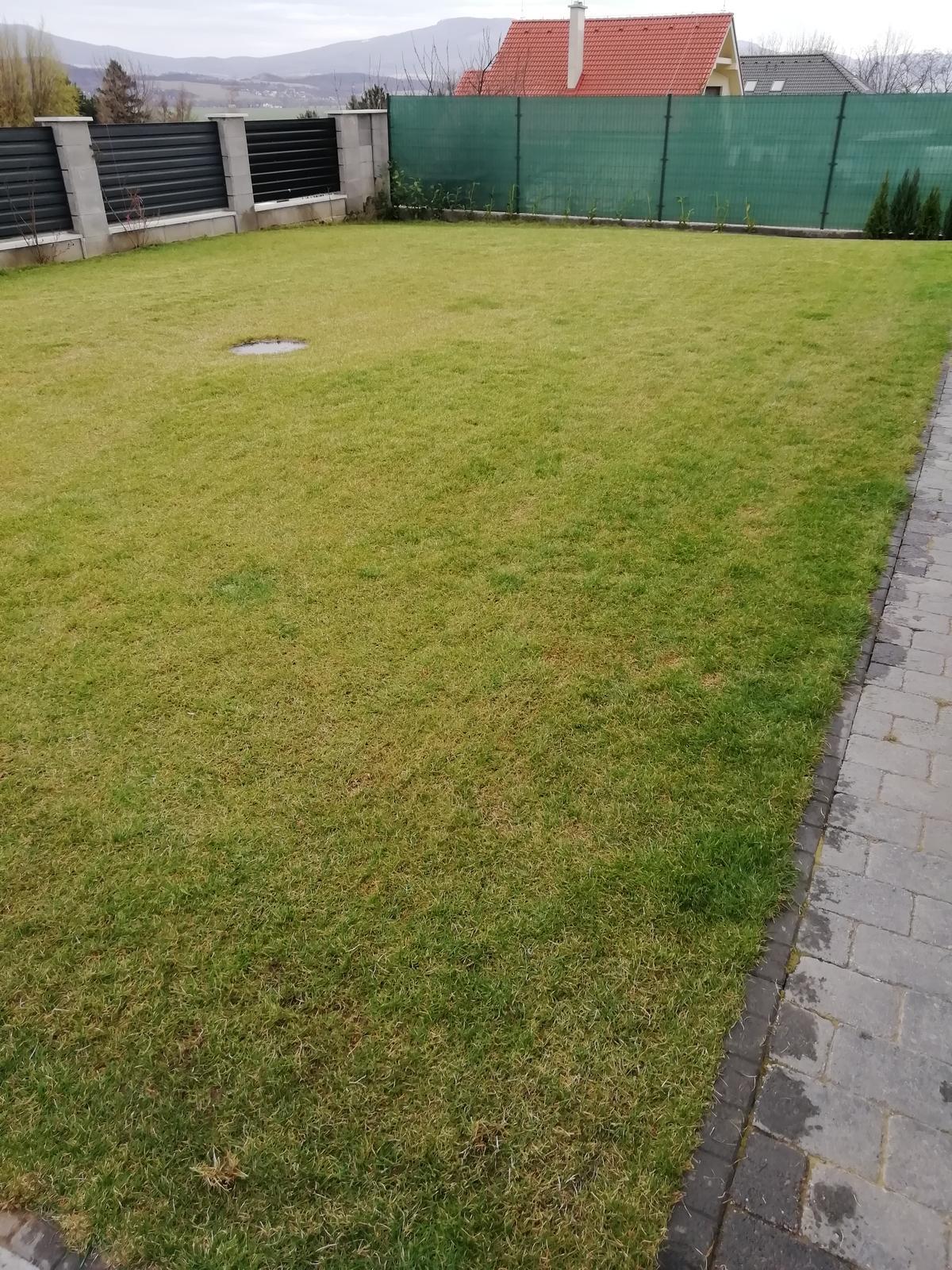 Záhradka 2019/20 bývame 4 a 5 rok :-) - Prvé kosenie a hnojenie... Dúfam, že sa mu bude dariť