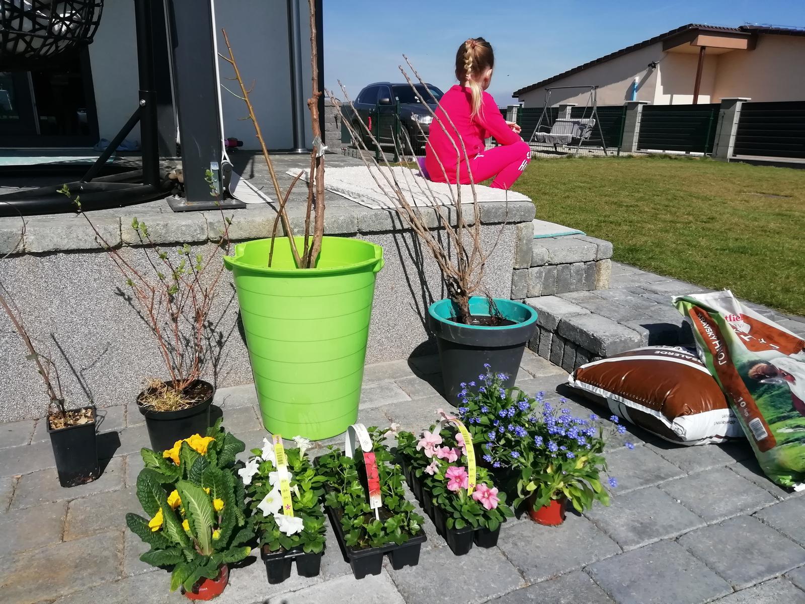 Záhradka 2019/20 bývame 4 a 5 rok :-) - Nakúpené