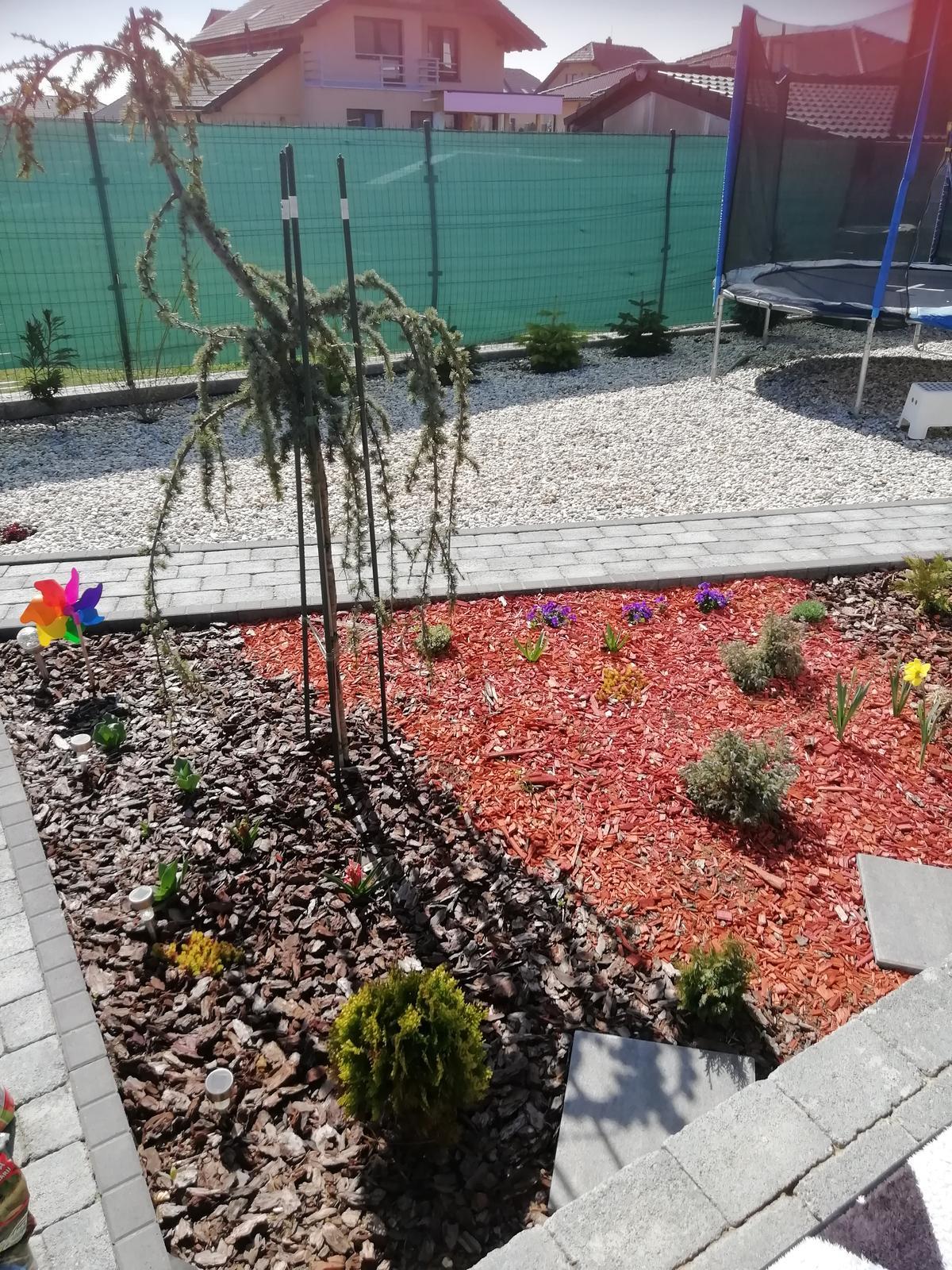Záhradka 2019/20 bývame 4 a 5 rok :-) - Pohľad z terasy pri kávičke