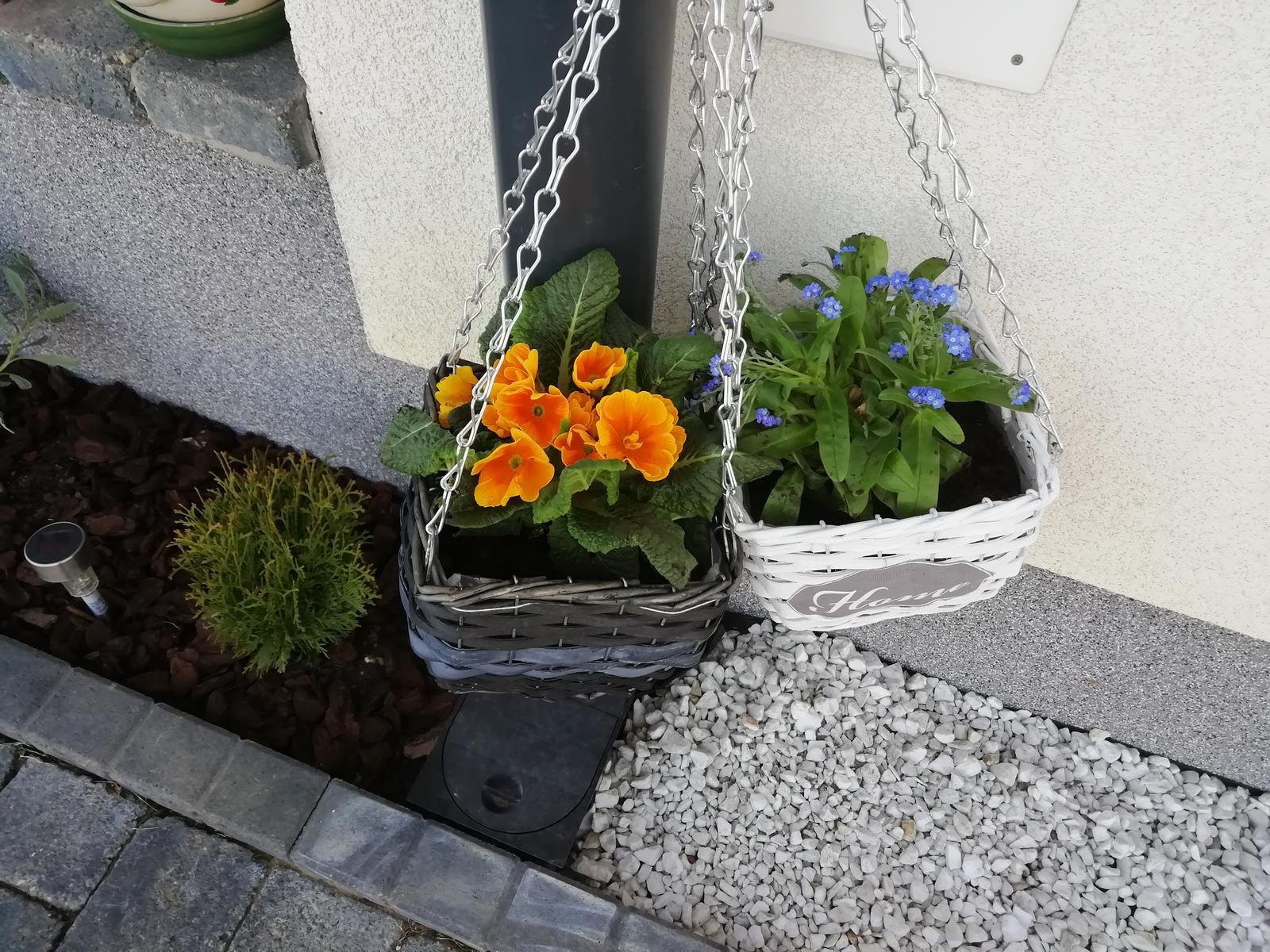 Záhradka 2019/20 bývame 4 a 5 rok :-) - Obrázok č. 61