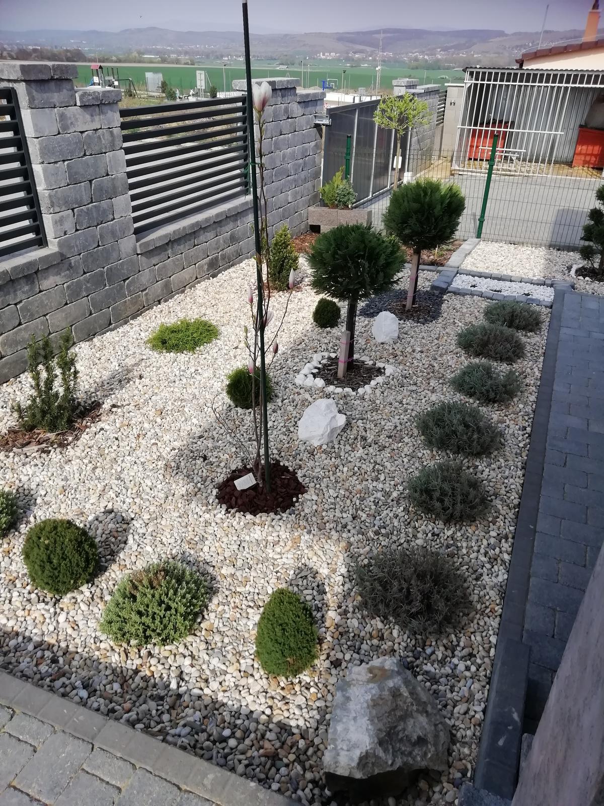 Záhradka 2019/20 bývame 4 a 5 rok :-) - Obrázok č. 130