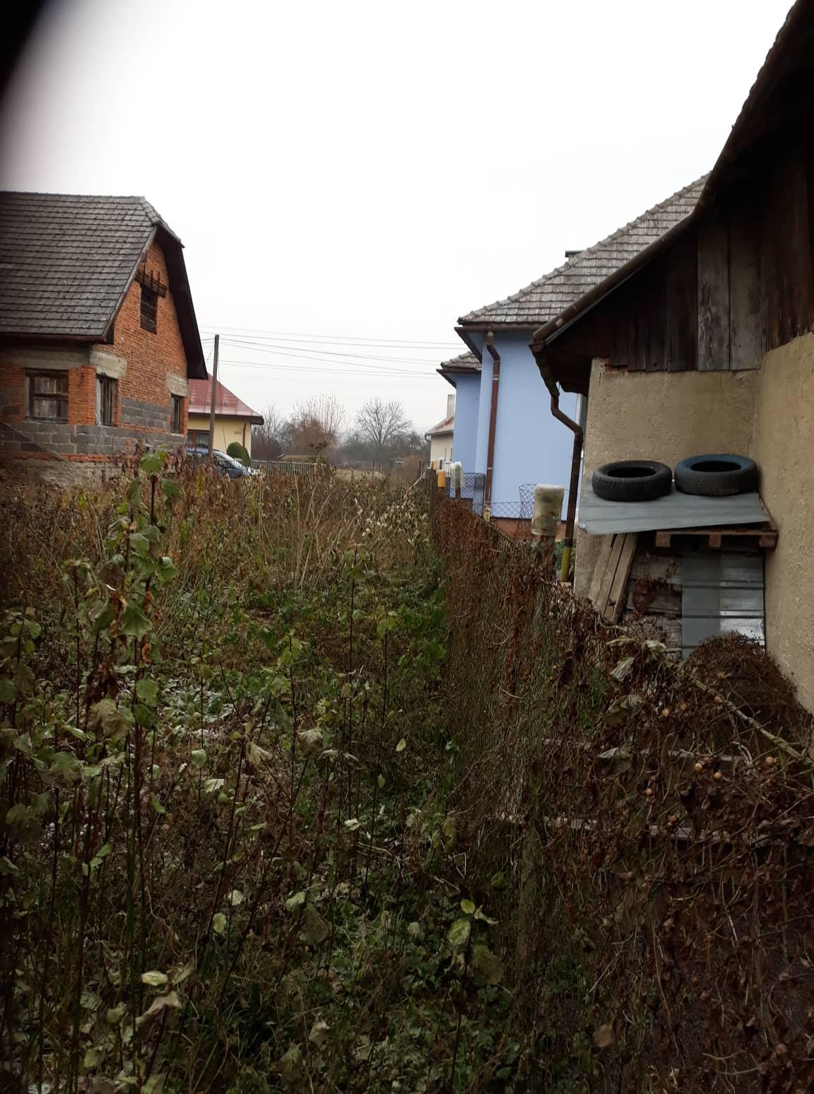 Rekonštrukcia domu-alebo chceme si splniť sen =》🏠🌻🌼🐶  mat domcek a vratit sa na Slovensko - pohlad zo zadu od zahrady na cestu