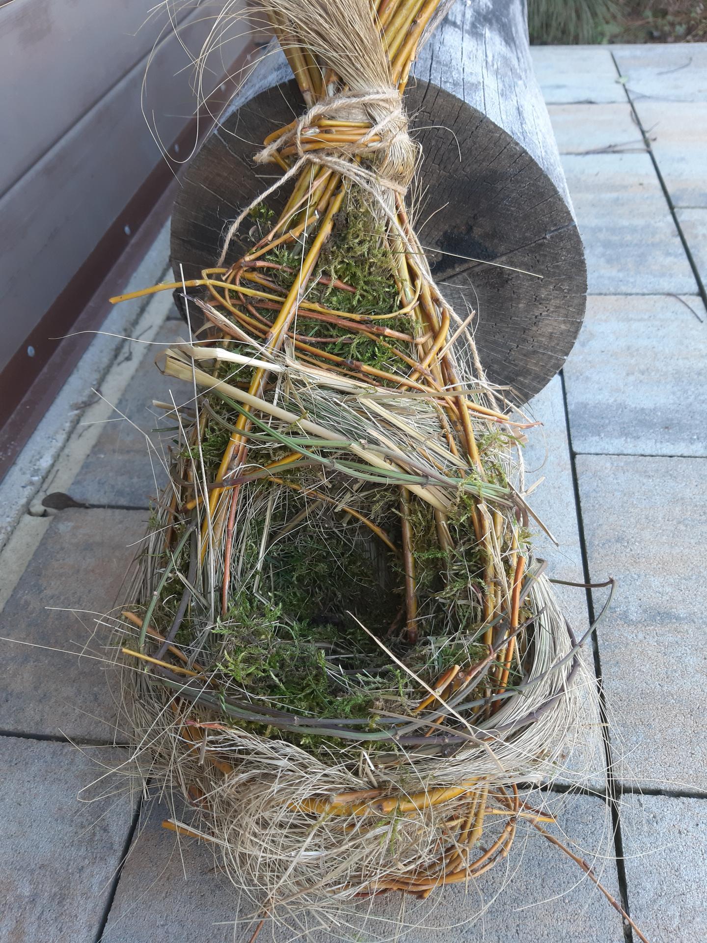 Vtáčie hniezdo