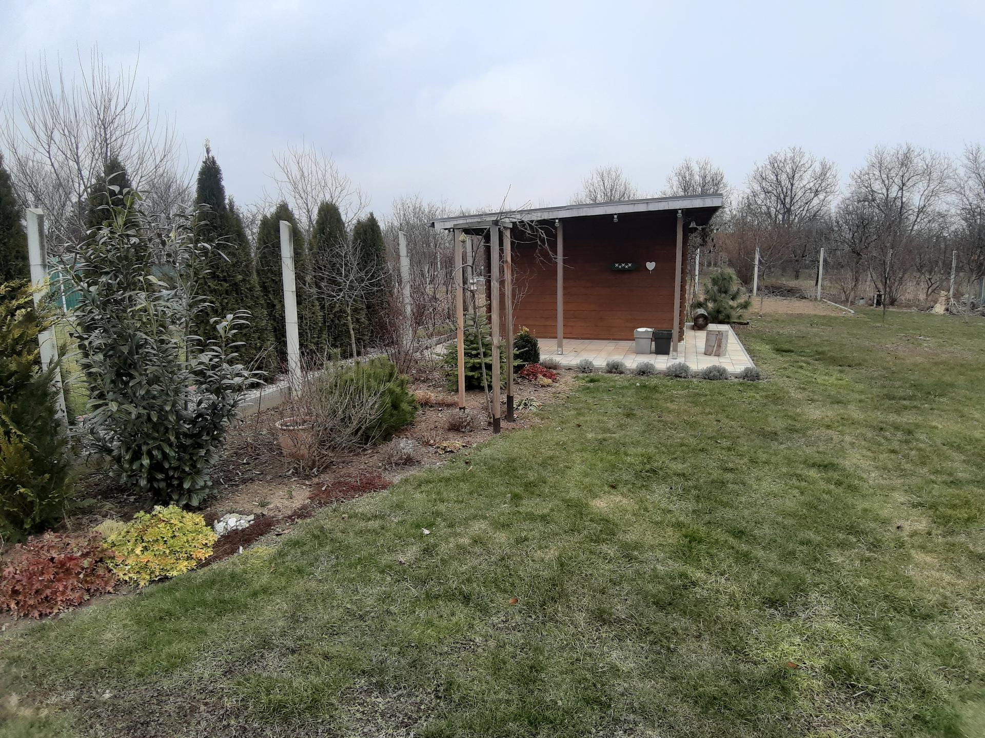 Záhrada 6. rok (2021) - Obrázok č. 8