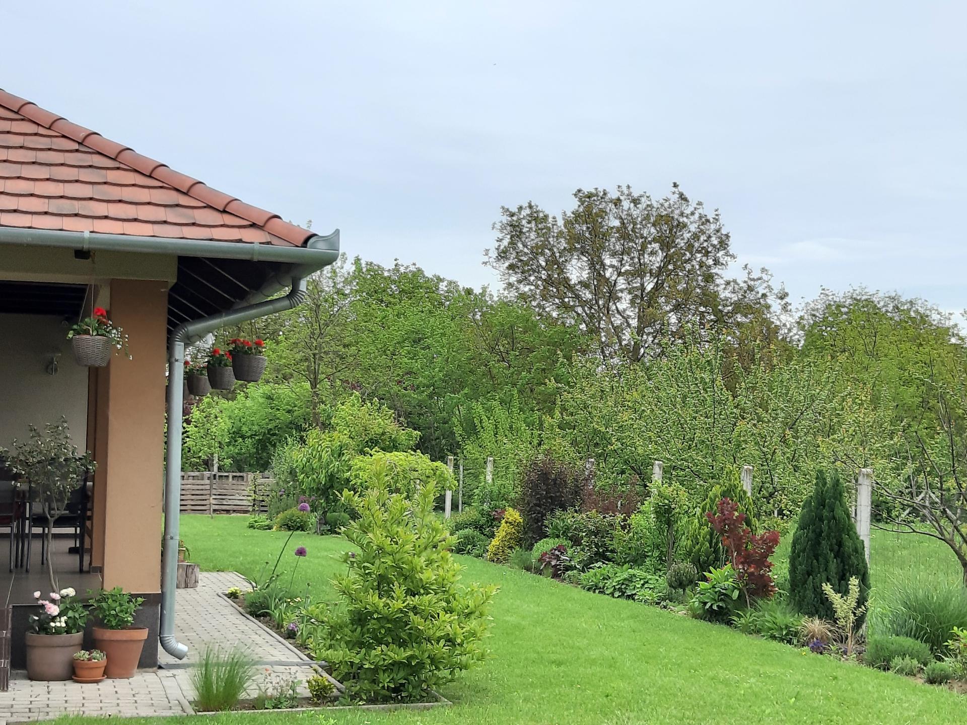 Záhrada 6. rok (2021) - Obrázok č. 39