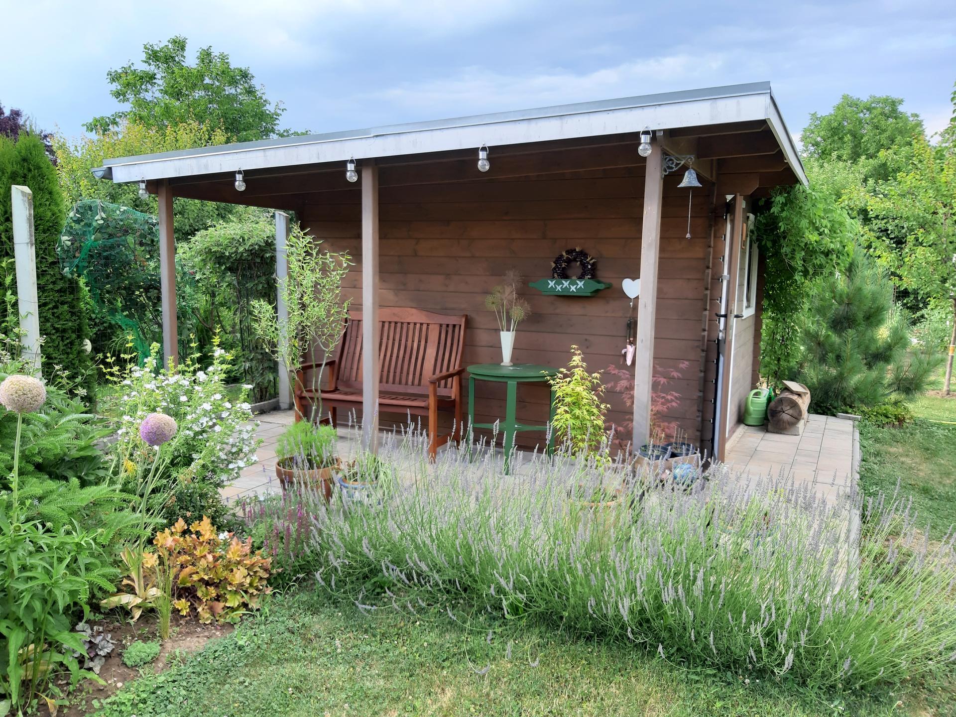 Záhrada 6. rok (2021) - Obrázok č. 58