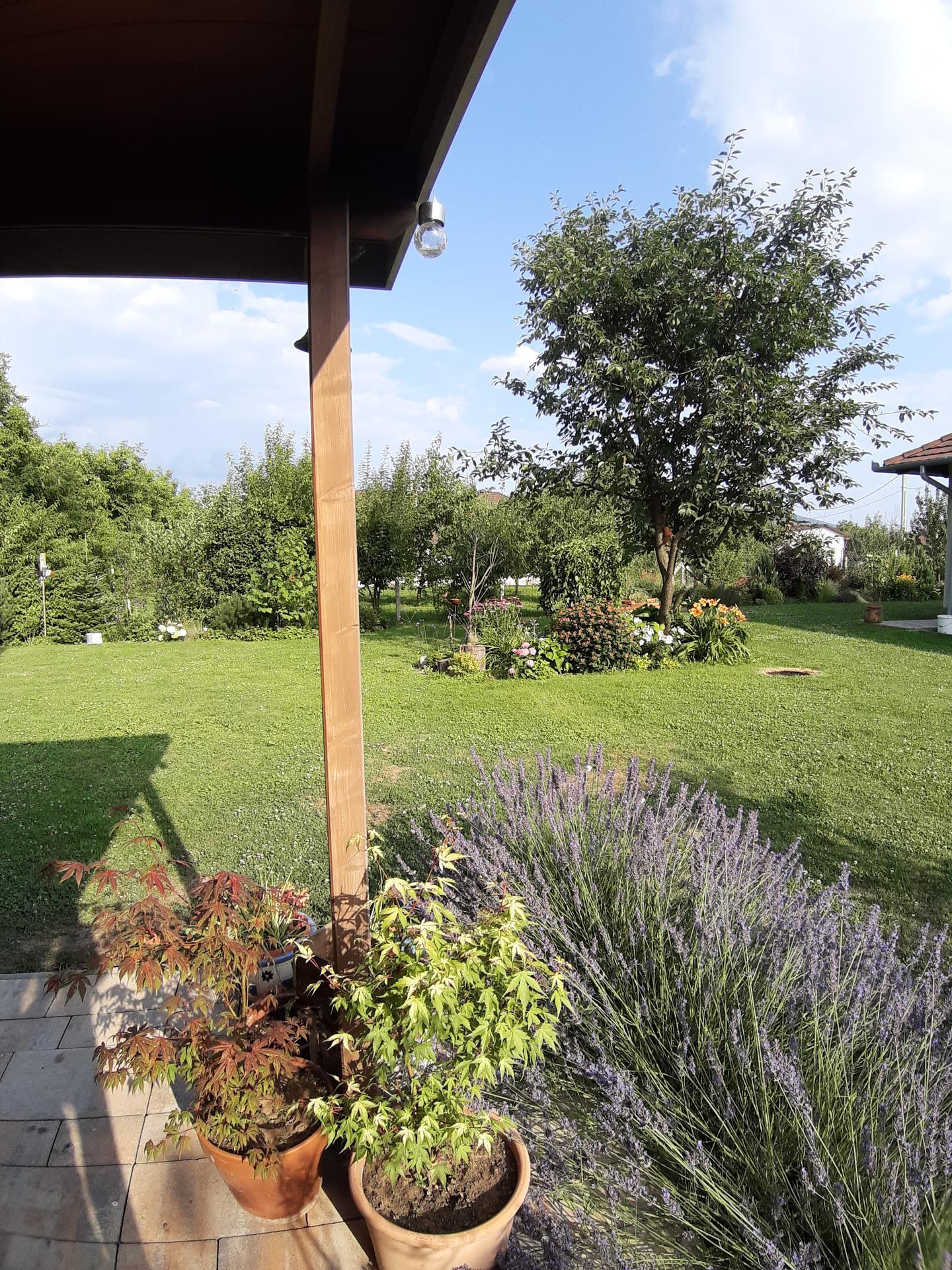 Záhrada 6. rok (2021) - Obrázok č. 82