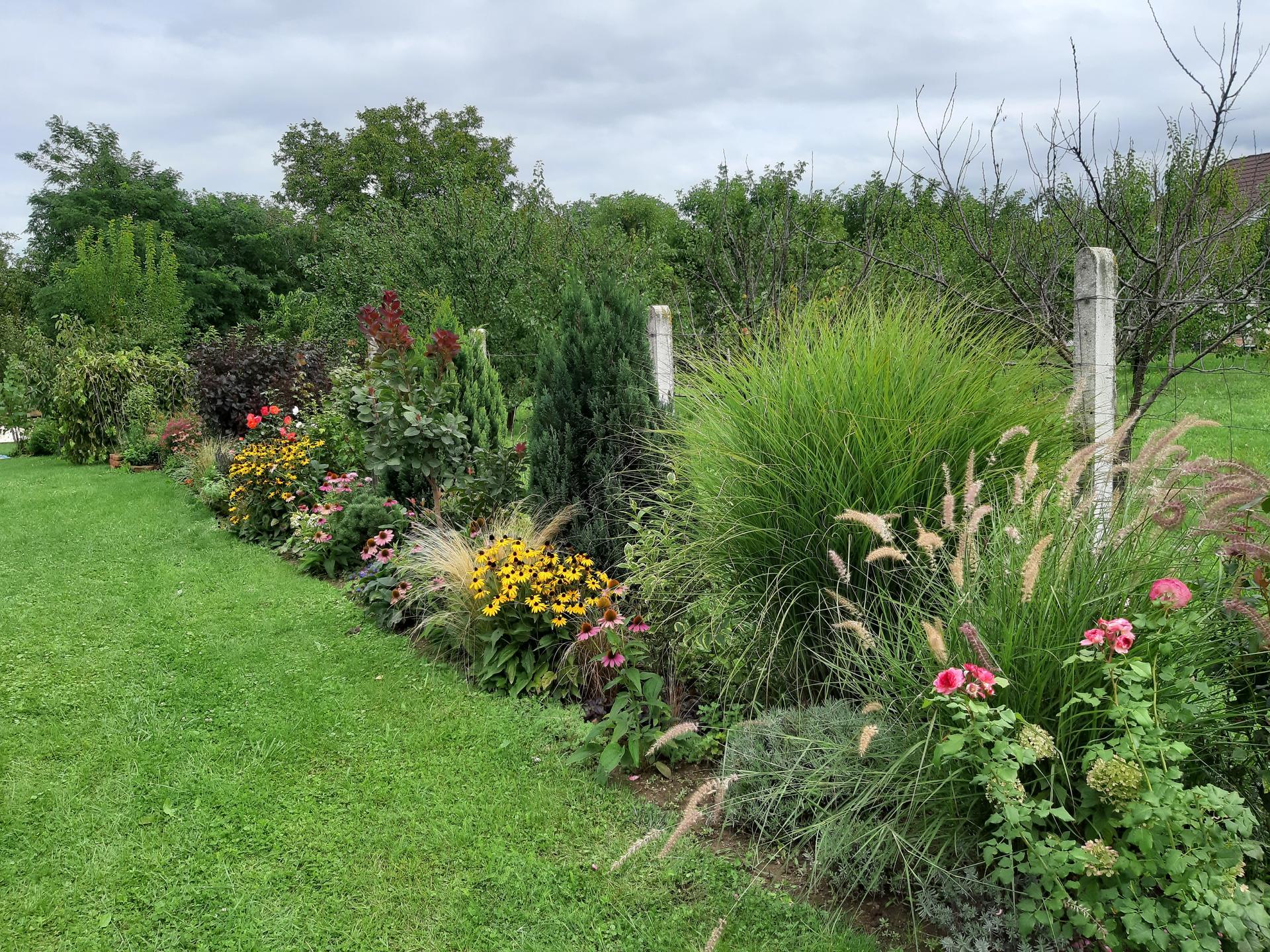 Záhrada 6. rok (2021) - Obrázok č. 74