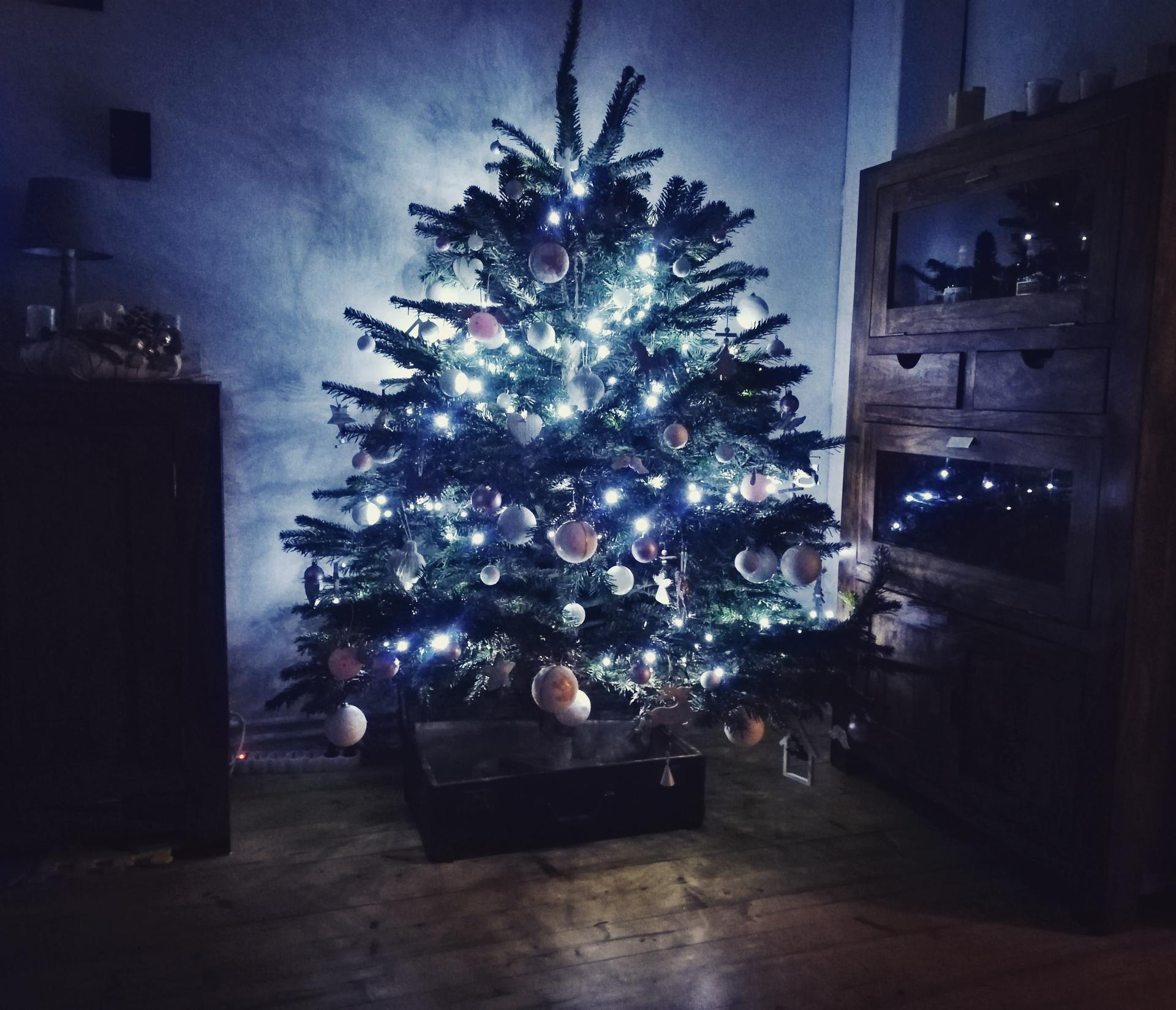 Vánoce 2019 - Obrázek č. 10