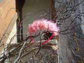 Růžová čelenka pro družičku,