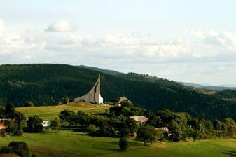 kostolík vyrastený z prírody