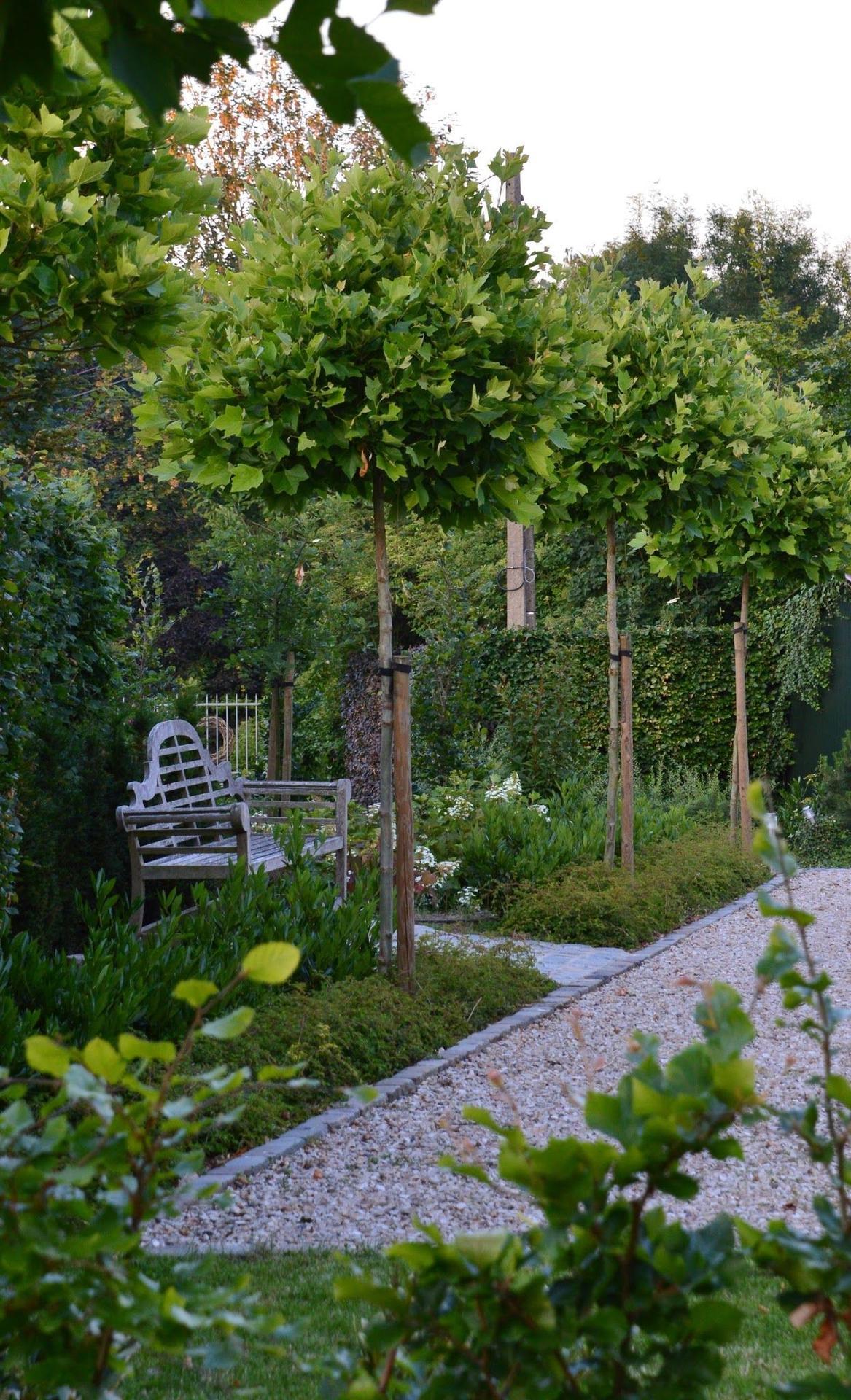 🤔Co do zahrady? 🌻🌹🌳🌱(inspi) - Obrázok č. 44