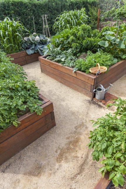 🤔Úžitkova záhradka (inspi) 🍒🍎🍇🥕🌽🥬🥒🍓 - Obrázok č. 2