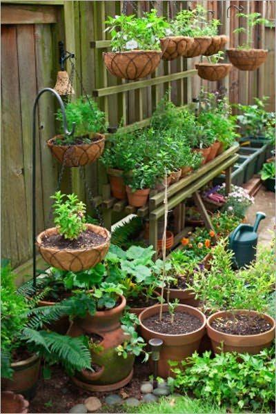 🤔Úžitkova záhradka (inspi) 🍒🍎🍇🥕🌽🥬🥒🍓 - Obrázok č. 3